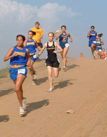 Lady Hawks attacking the downhill