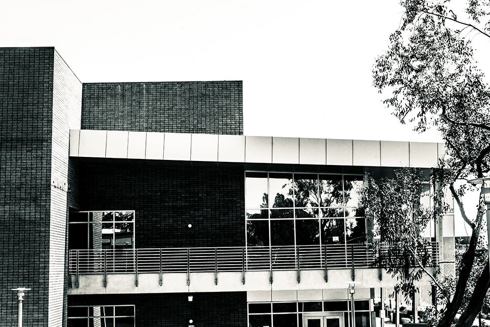 Black and White of Campus